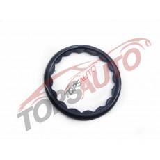 Уплотнительное кольцо 210494M510
